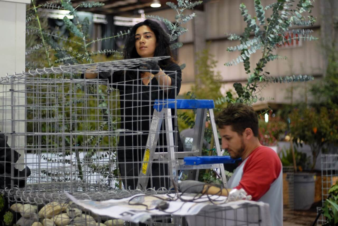 Nahal Sohbati (left) and Daniel Correia install gabions. Photo by Avery Hu.